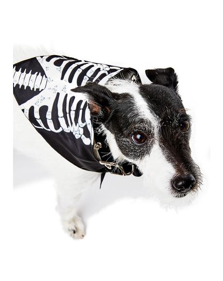 Diggin Those Bonez Dog Bandana