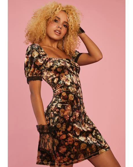 Vintage Vision Velvet Dress
