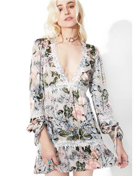 Luciana Swing Dress