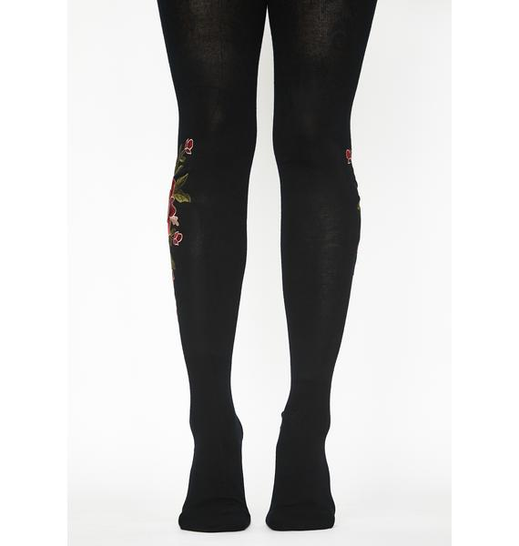 MeMoi Dimensional Floral Embroidered Tights