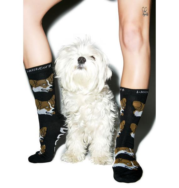 Welsh Corgi Socks
