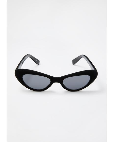 Velvet Cat Smoke Sunnies