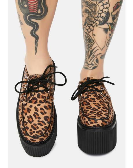 Leopard Classic Stratocreepers