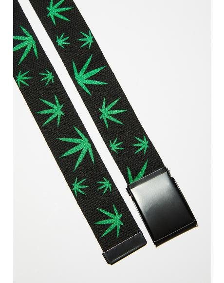 So Lifted Canvas Belt