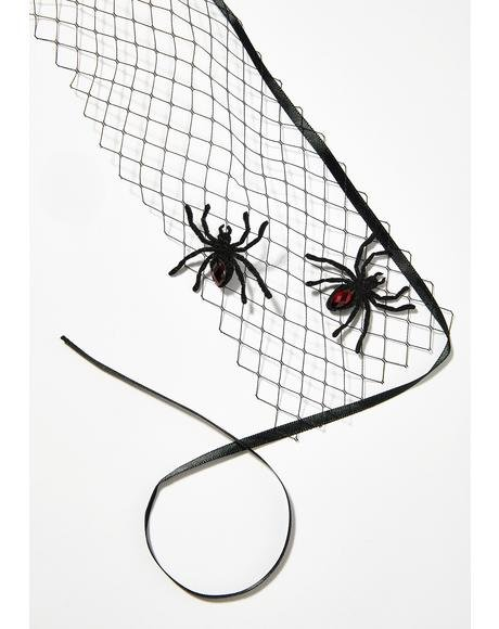 Night Widow Spider Veil