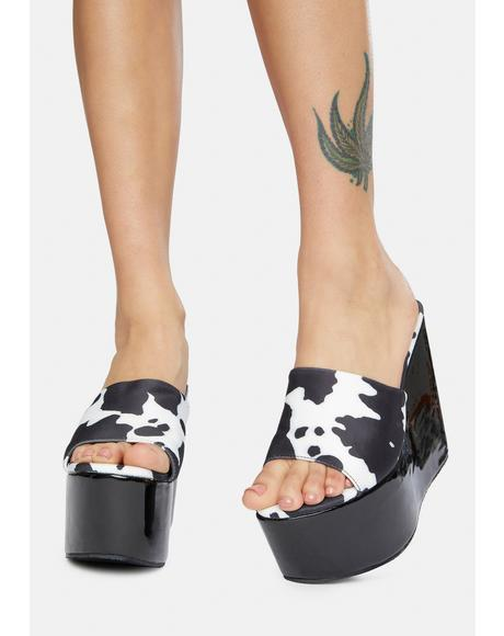 Seen It All Cow Print Platform Wedges