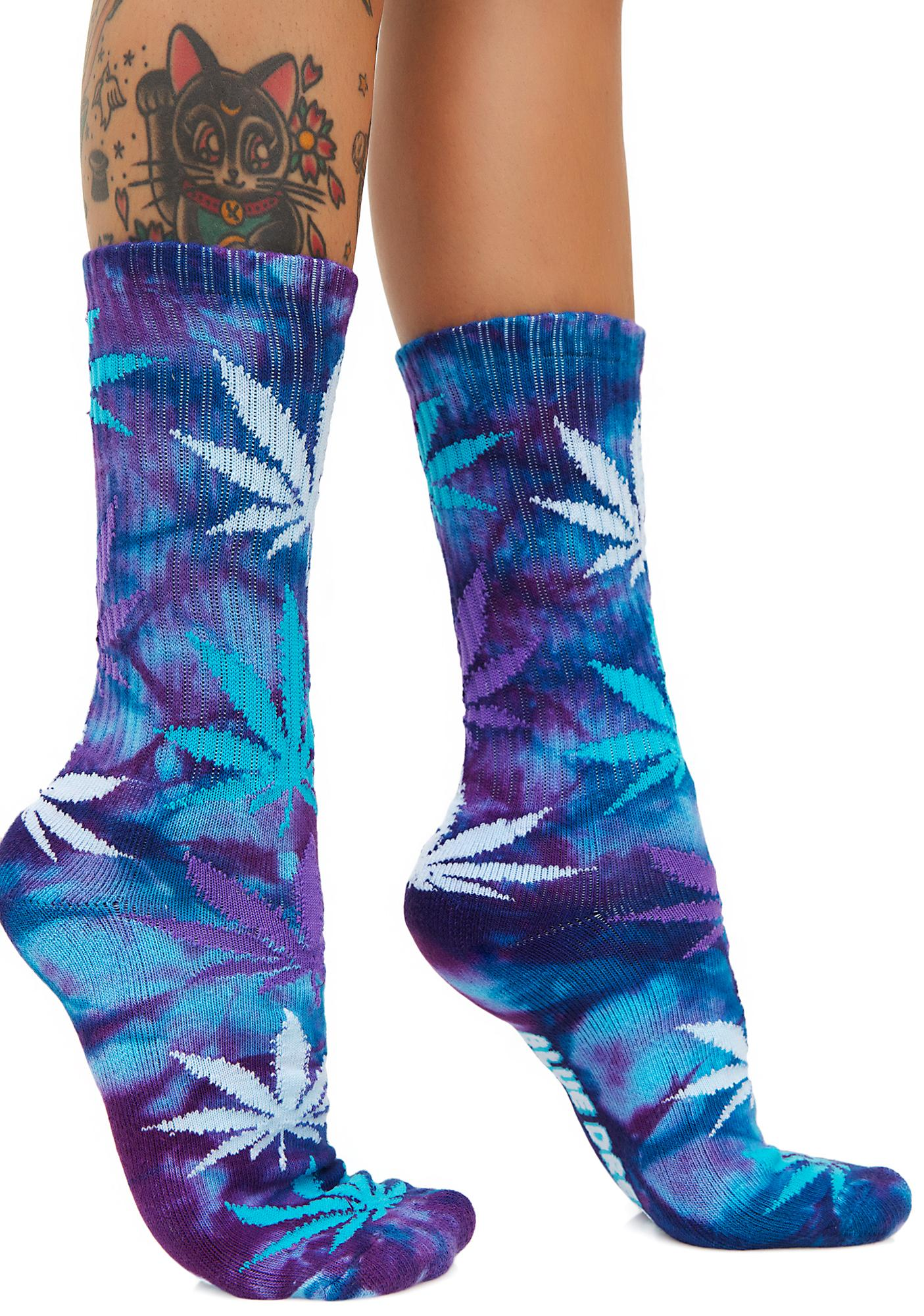 a description of the plant life beyond the weed socks Cannabis, also known as marijuana among other names, is a psychoactive drug from the cannabis plant intended for medical or recreational use the main psychoactive part of cannabis is tetrahydrocannabinol (thc) one of 483 known compounds in the plant, including at least 65 other cannabinoids.