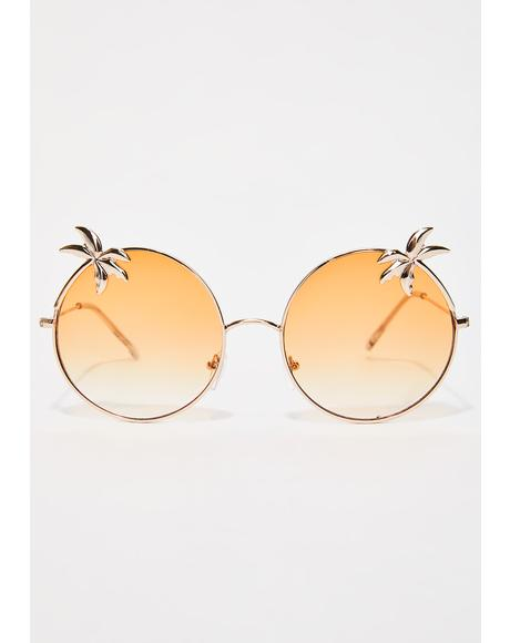 Eden Palm Sunglasses