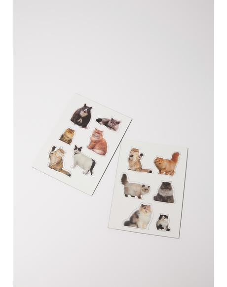 Feline Lazy Fat Cat Magnets