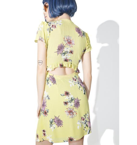 Pink Lemonade Floral Dress