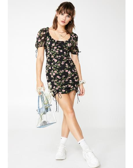 Biscotti Mini Dress