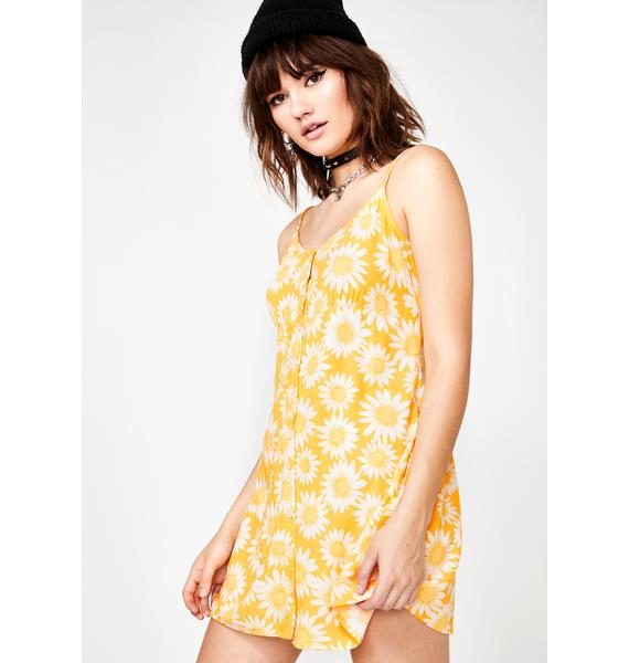 Motel Sunny Auvaly Dress