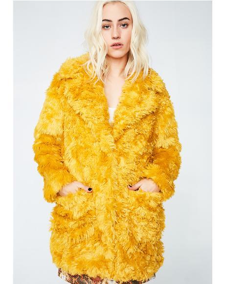 I Purr Coat