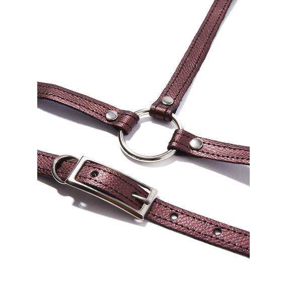 In Control Collar Harness