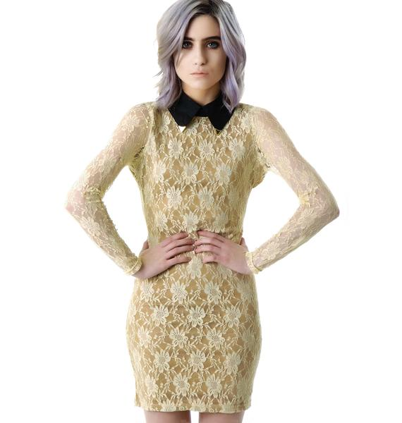 Arianna Tipped Collar Lace Dress