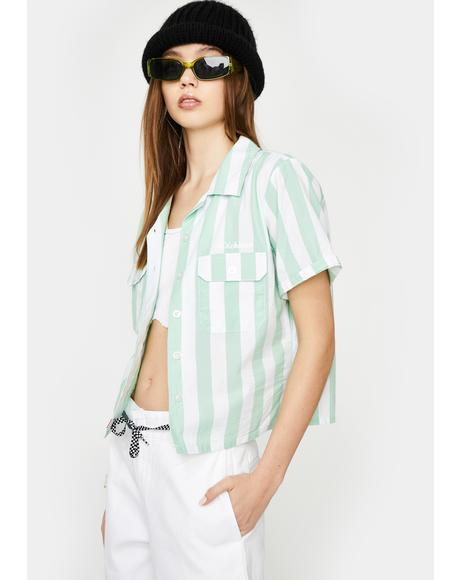 Mint Striped Short Sleeve Button Up Shirt