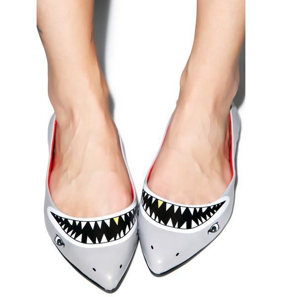 Taylor Says Sharkie Flats