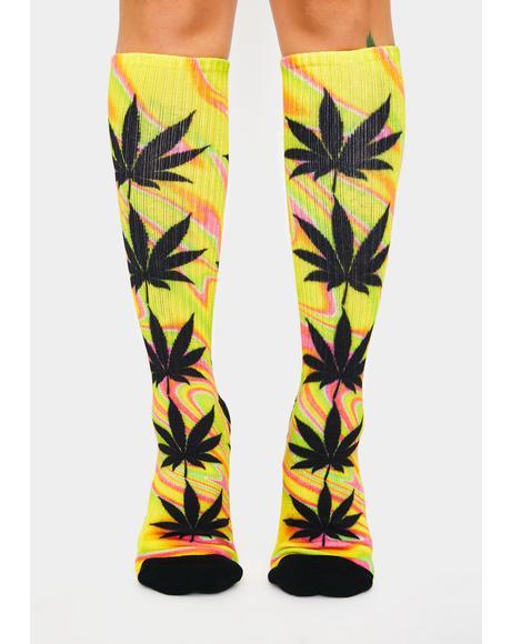 Blazing Yellow Good Trip Plantlife Socks