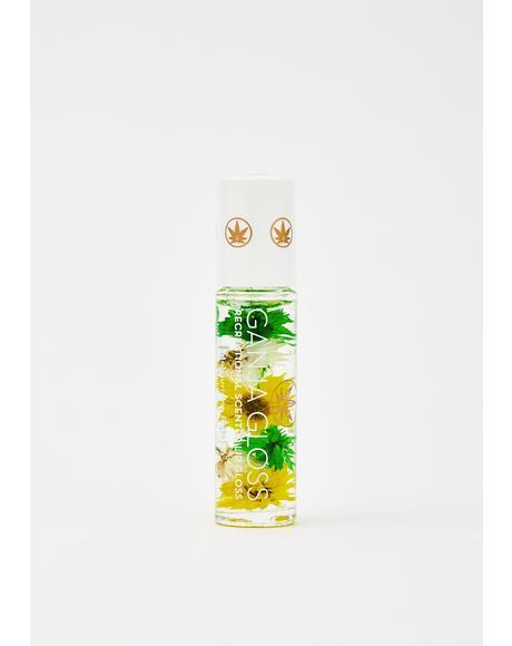Pineapple Express Ganja Gloss