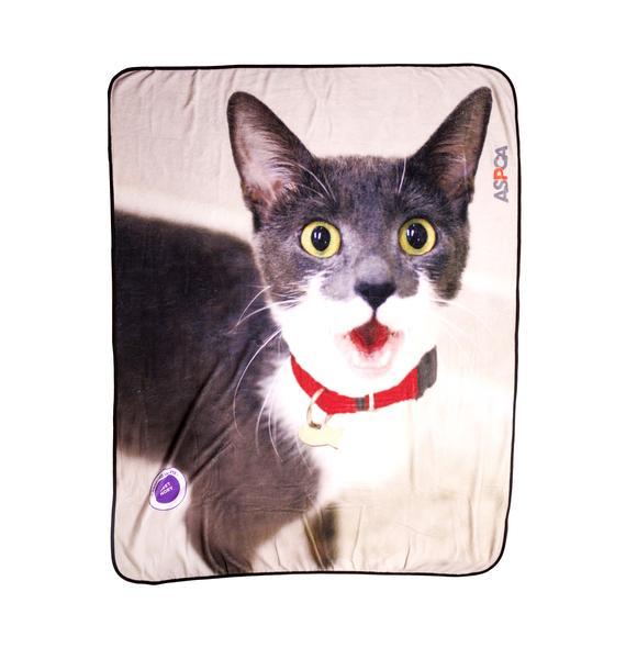 ASPCA Curious Kitty Blanket