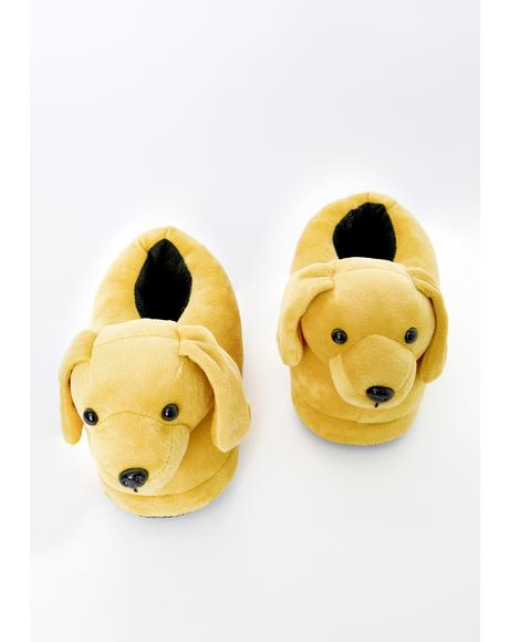 Stay Pawsitive Dog Slippers