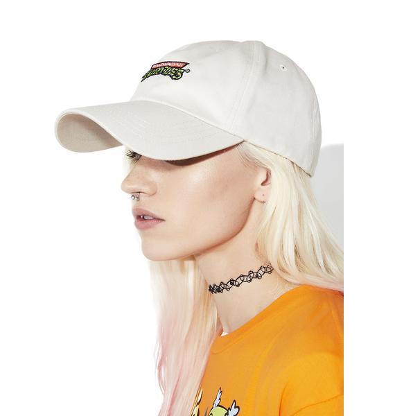 CRSHR Ninja Turtle Hat