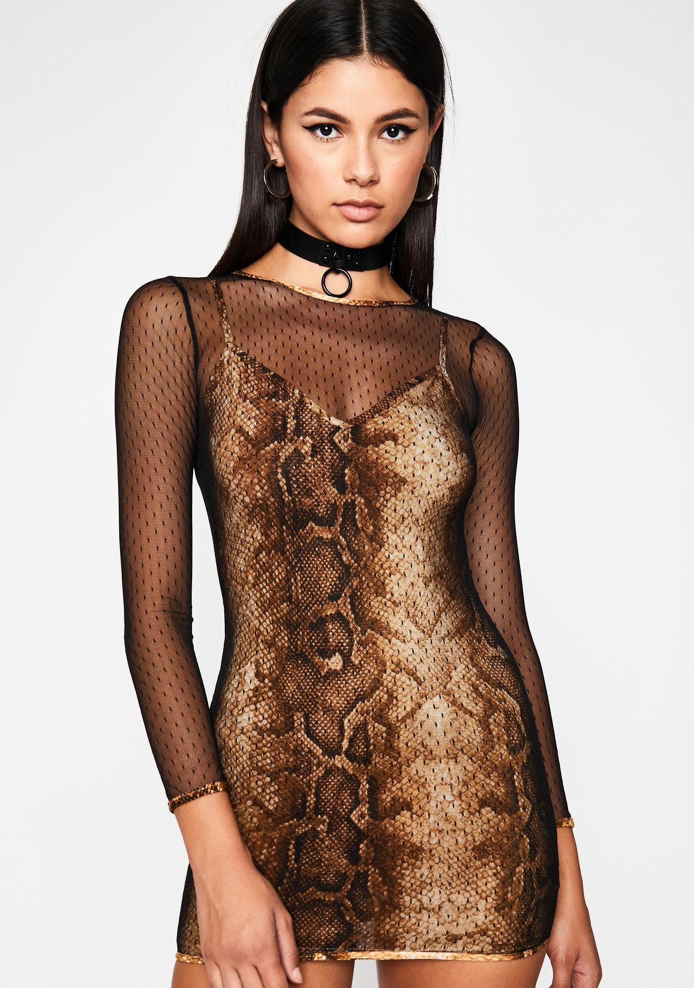 Cobra Scandalous Lover Sheer Dress