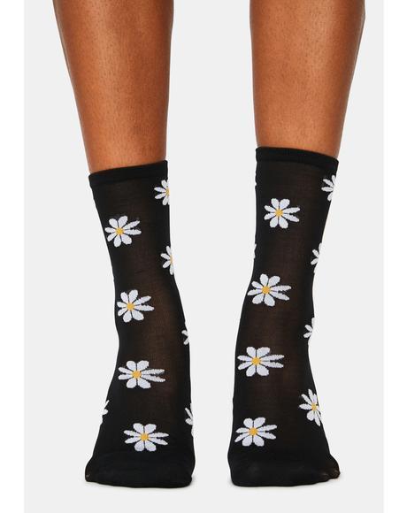 Noir Dates With Daisies Sheer Crew Socks