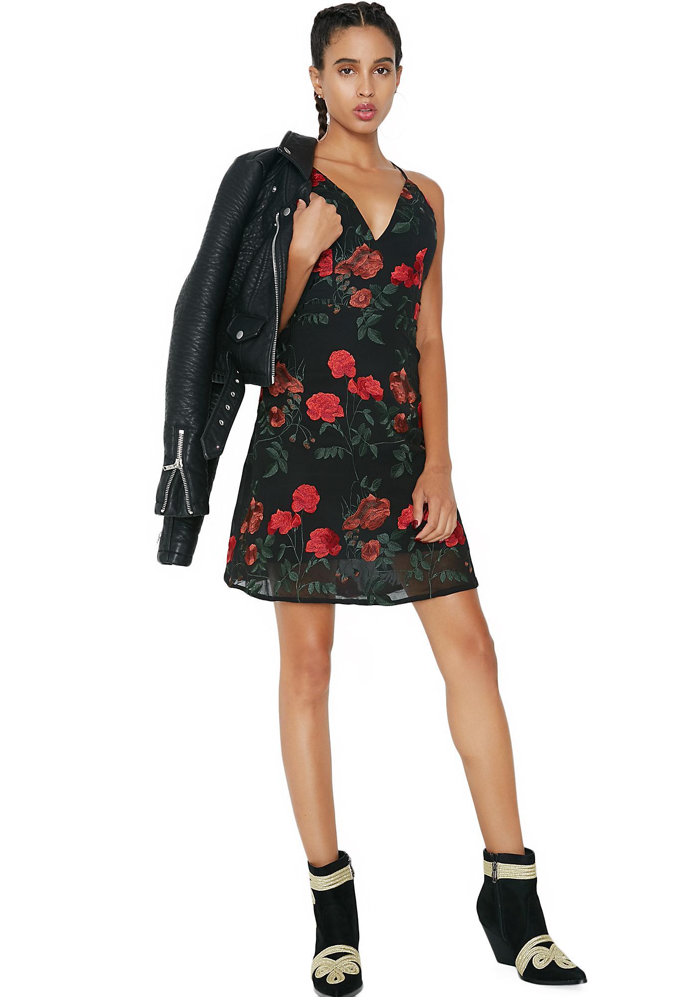 Rosa Embroidered Mini Dress