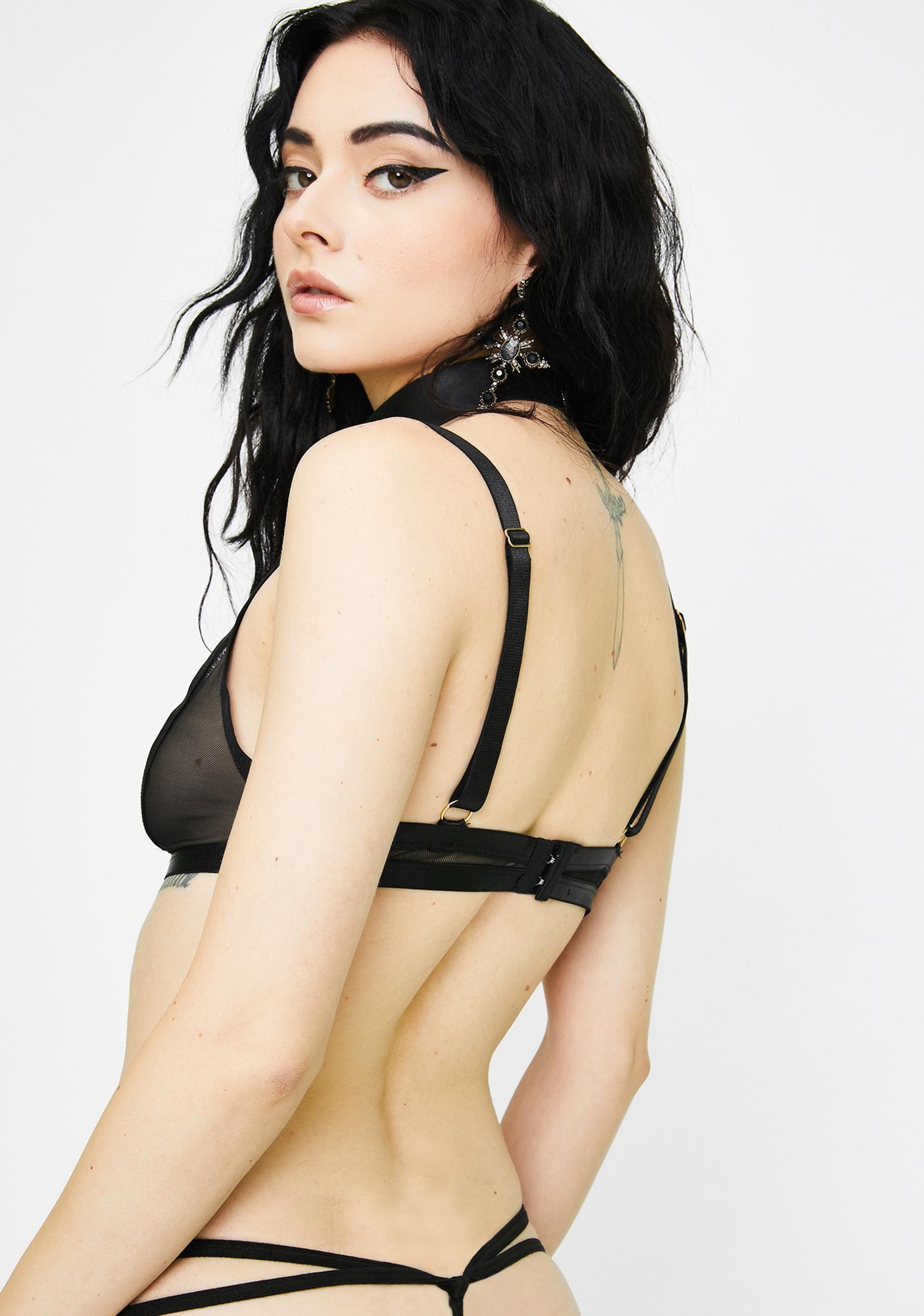 Dark Sweet Seduction Sheer Bodysuit