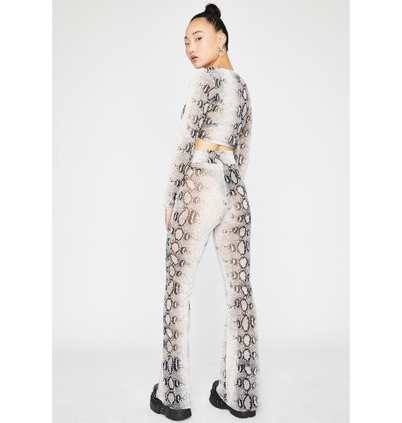 Snakeskin This Just In Pant Set