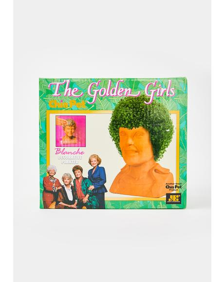 Golden Girls Blanche Planter