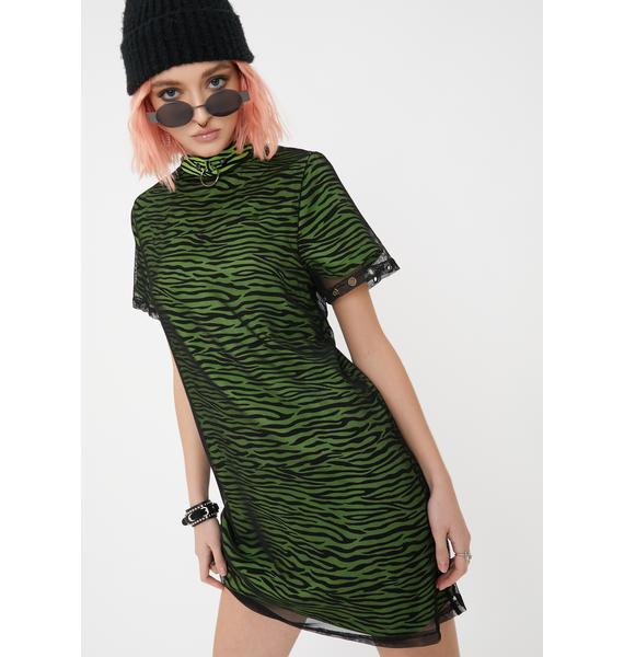 Disturbia Dazed Zebra Mesh Dress
