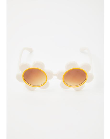 Daisy Circle Sunglasses