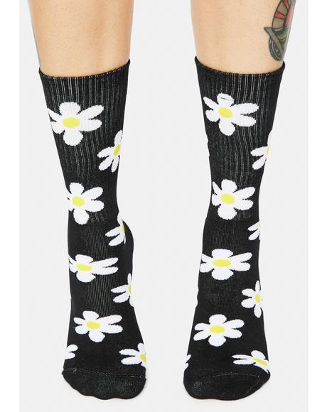 Black Daisy Print Crew Socks