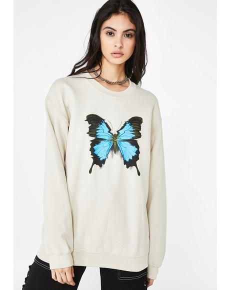 Crazy Beautiful Graphic Sweater