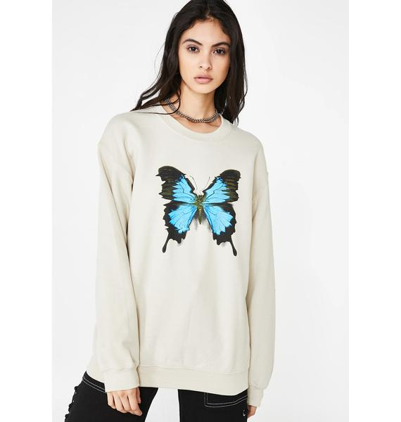 Petals and Peacocks Crazy Beautiful Graphic Sweater