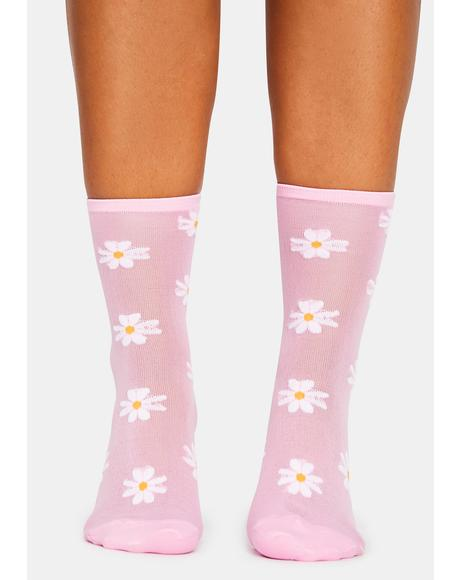 Dates With Daisies Sheer Crew Socks