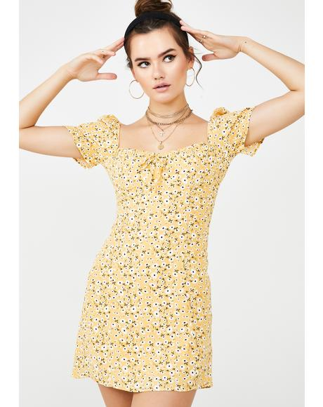 Spoiled N' Sunny Mini Dress