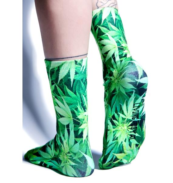High Lyfe Socks