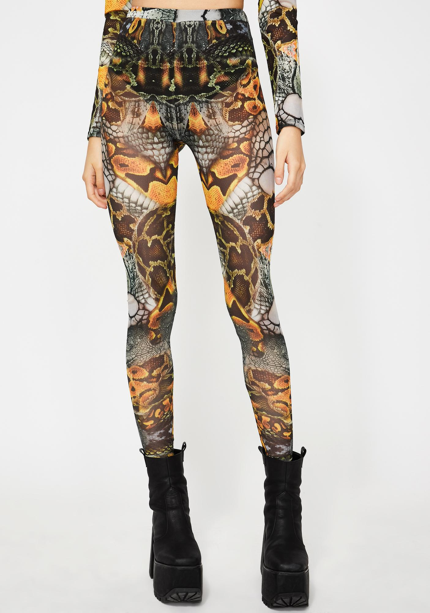 Jaded London Snake Print Mesh Leggings