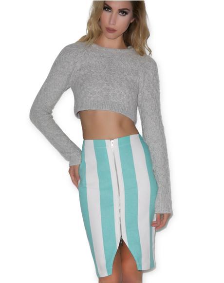 Bold Lane Front Zip Skirt