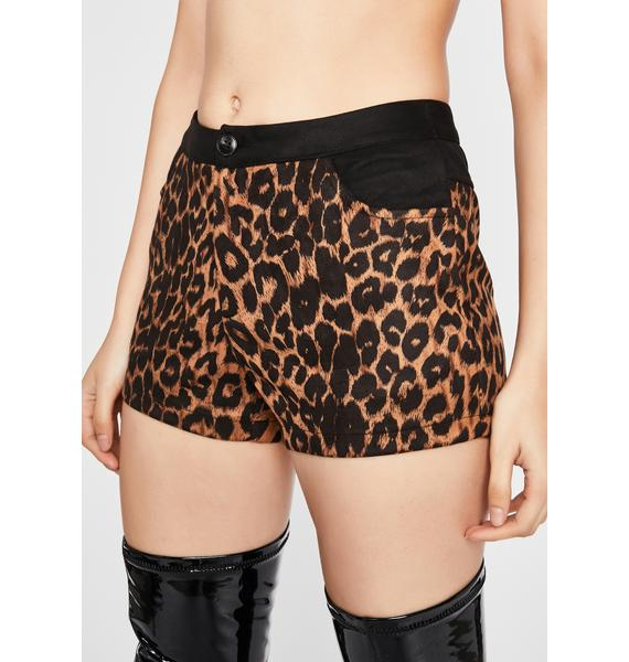 Wildcat Commotion Suede Shorts