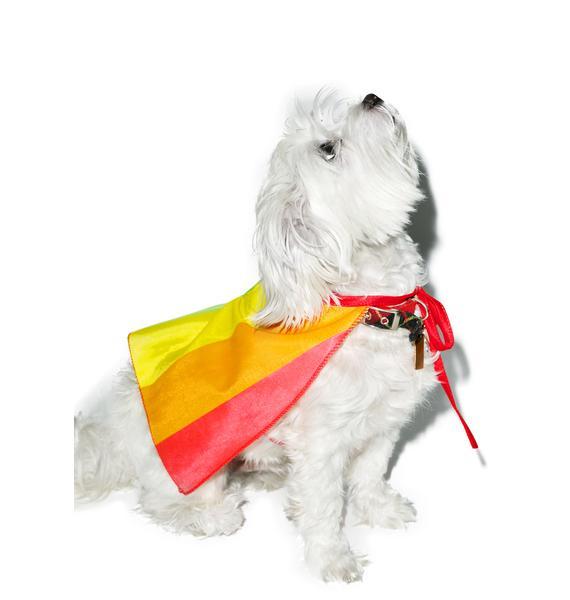 Rainbow Dog Cape Costume