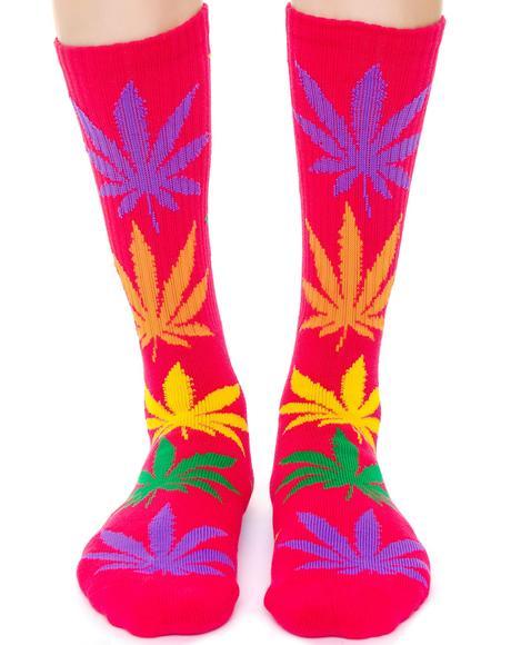 Plantlife Multi Color Sock