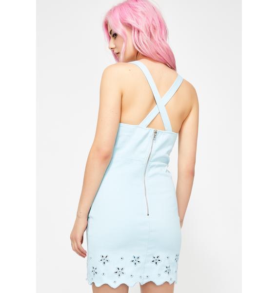 Berry Garden Fairy Mini Dress