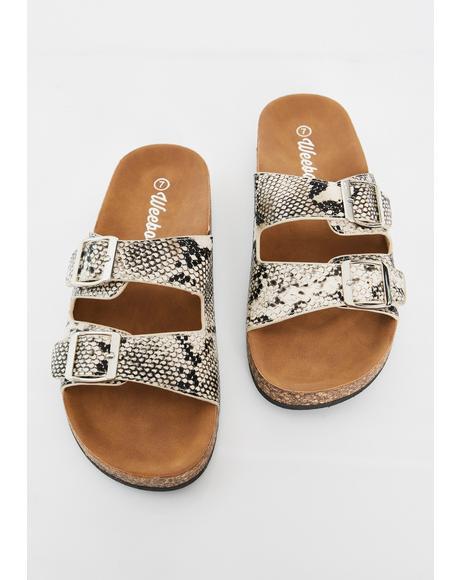 Vile Sandy Paradise Buckle Sandals