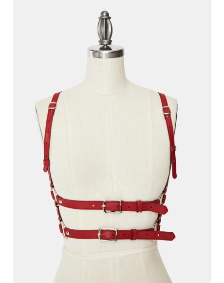 Red Tight Hold Buckle Harness