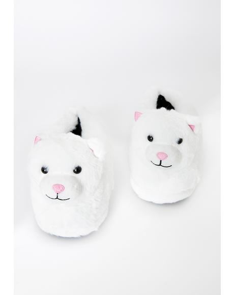 Breaking Mews Cat Slippers