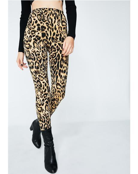 Leopard Sco Leggings